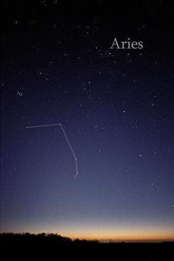 Aries-Ram-2