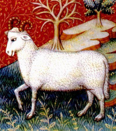Aries-Ram-3